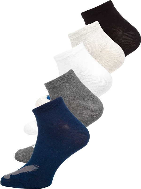 Vícebarevné pánské ponožky Bolf X10171-5P 5 PACK